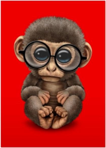 cpu-monkey-1-hardware-pro