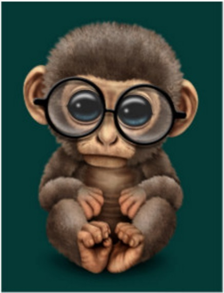 cpu-monkey-2-1-hardware-pro