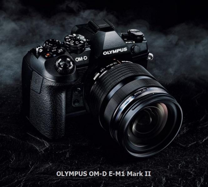 om-de-m1mk2-1a-hardware-pro